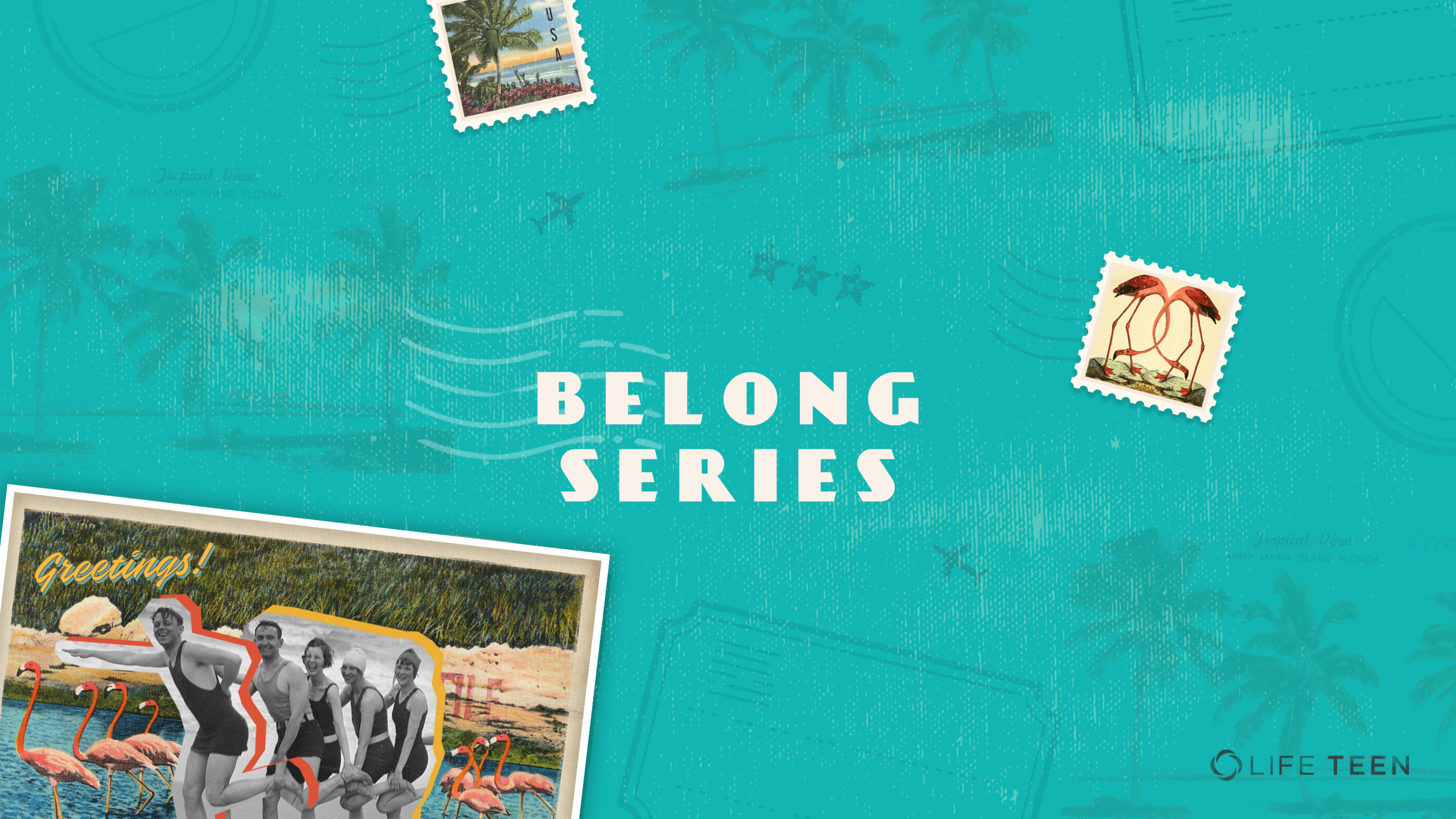 Belong Series   Environment